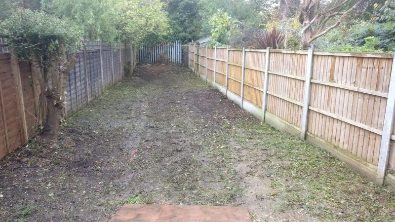 Garden Clearance | Tidy up London